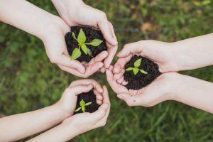cómo reducir huella de carbono